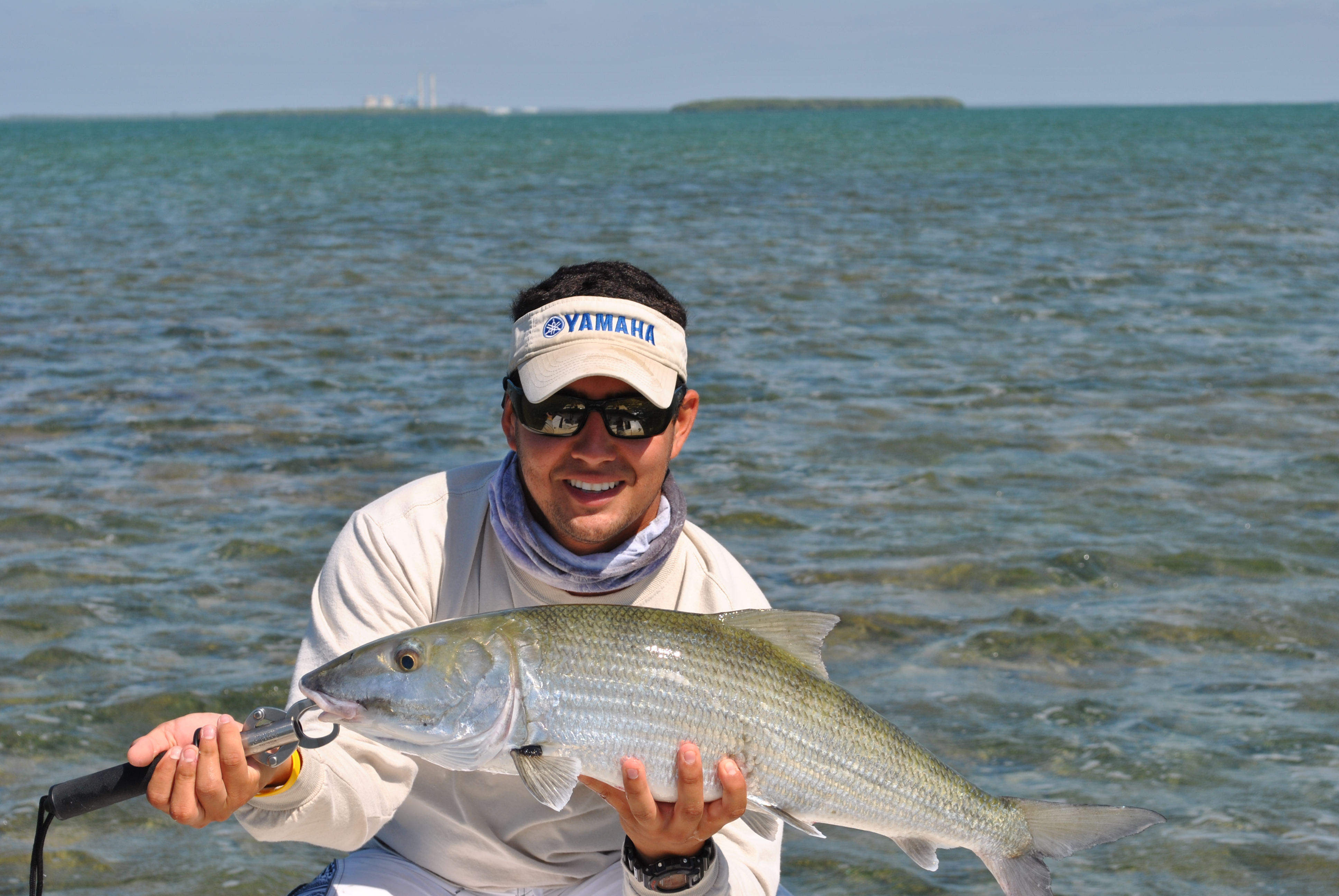 Fly fishing in flamingo miami fishing charters for Fly fishing miami